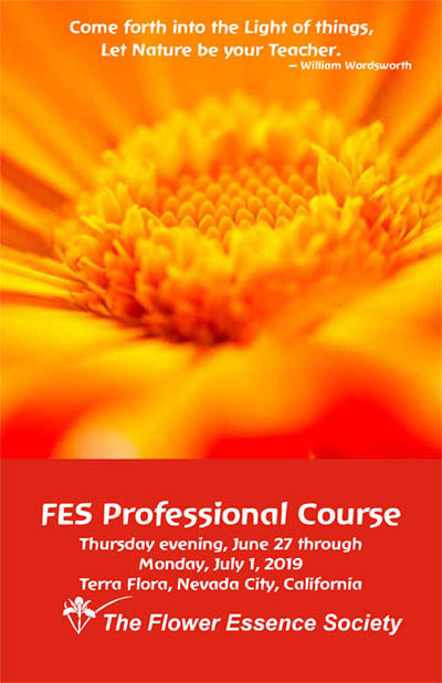 professional course brochure cover