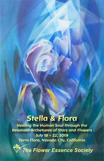 stella and flora brochure cover
